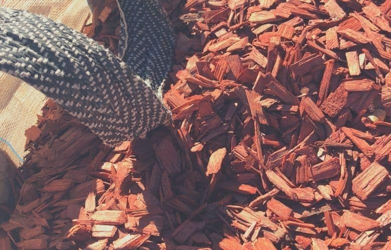 mulch for dogs