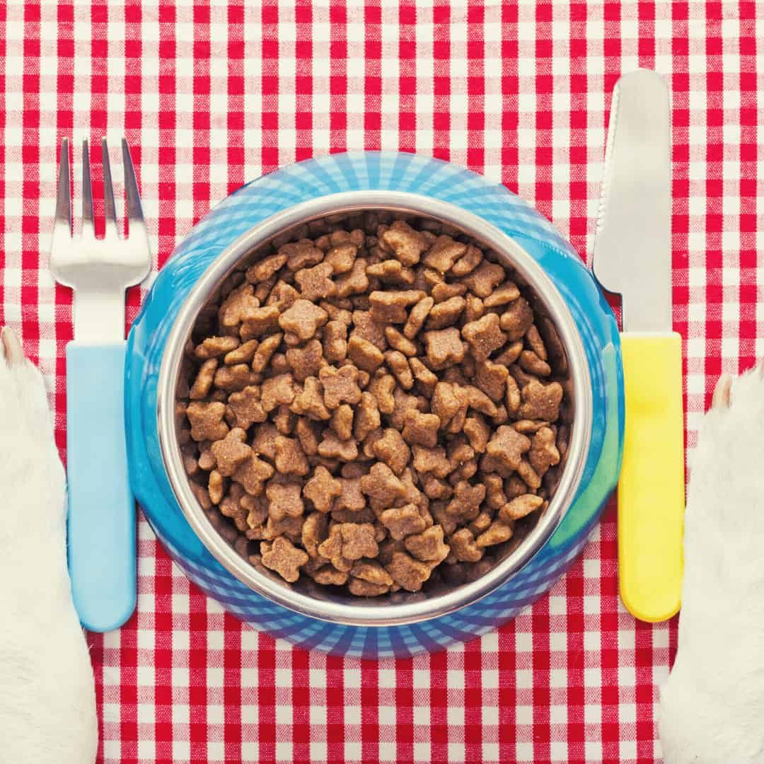 best dog food by brands