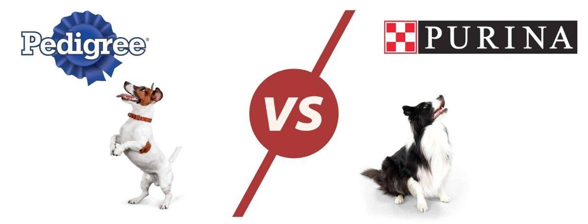 pedigree vs purina