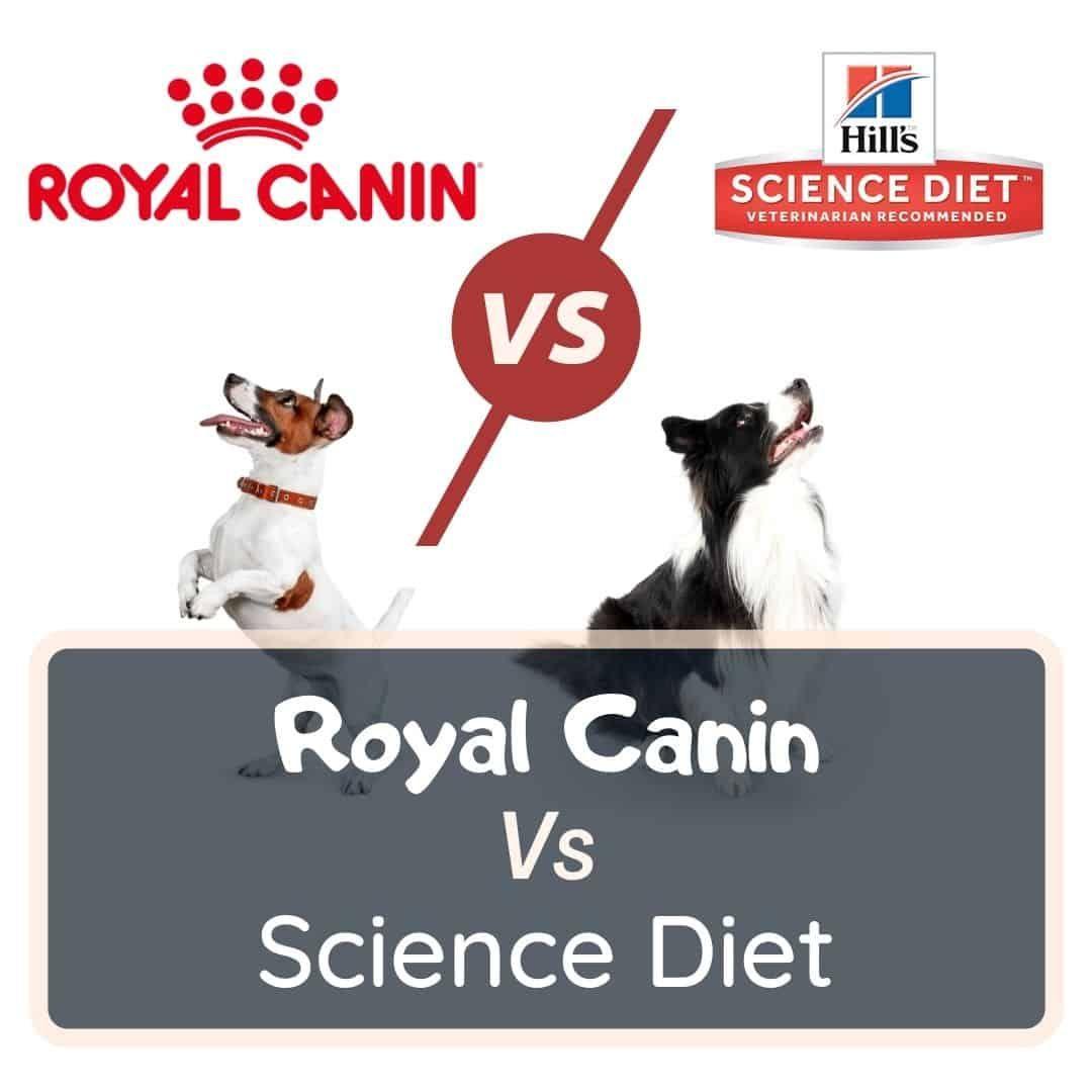 royal canin vs science diet